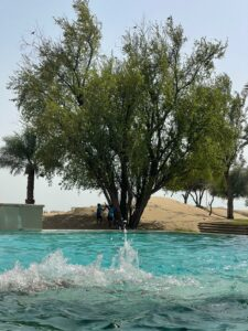 Emirat Ras Al Khaimah als Touristenmagnet